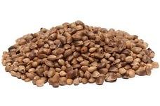 Link to Hemp Seeds