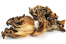 Dried Hen of the Woods (Maitake) Mushrooms