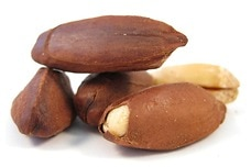 Link to Pili Nuts