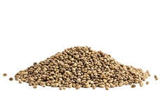 Toasted Hemp Seeds (Salted)
