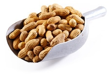 Jumbo Roasted Peanuts (I