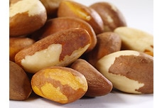 Organic Brazil Nuts (Raw, No Shell)