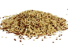 Organic Sprouted Grains Blend