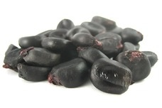 Organic Purple Corn Kernels