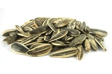 Israeli Sunflower Seeds (Unsalted, In Shell)