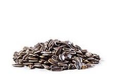 Link to Kosher Seeds