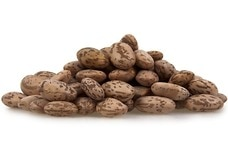 Link to Pinto Beans