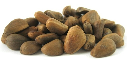 Raw Pine Nuts (In shell)