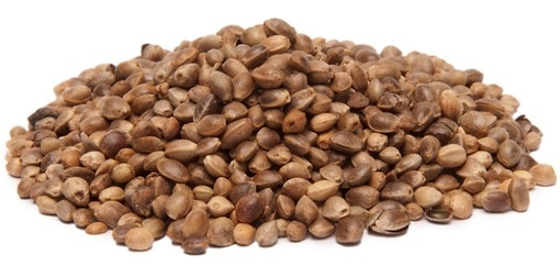Image result for hemp seeds