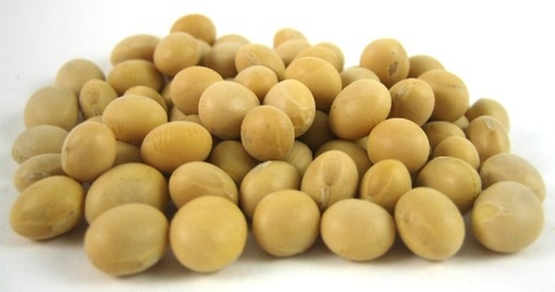 Raw Soybeans