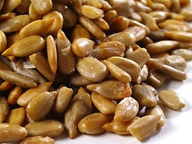 Organic sunflower seeds in shell