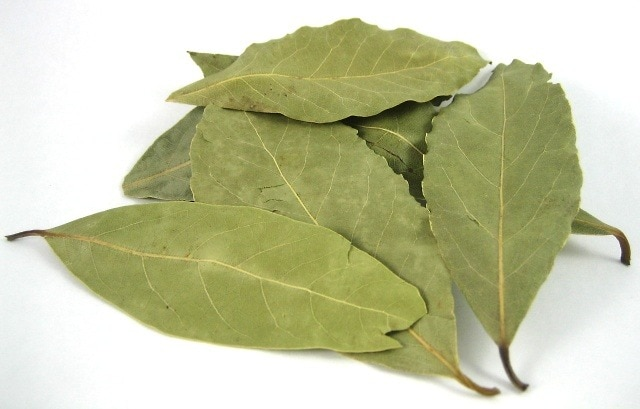 Bay leaves laurel leaves herbs spices cooking baking - Cook bay leaves ...