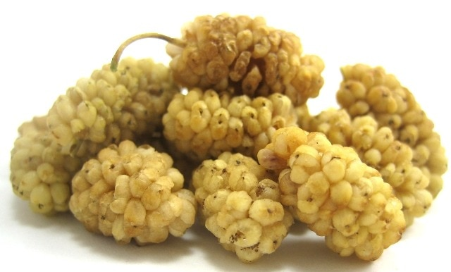 mulberry fruit healthy fruit for pregnancy