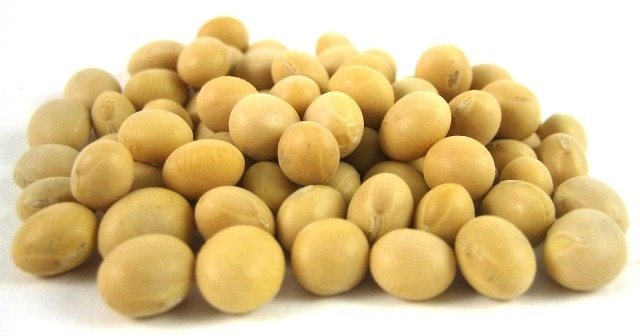Organic Soy Beans Cooking Amp Baking Nuts Com