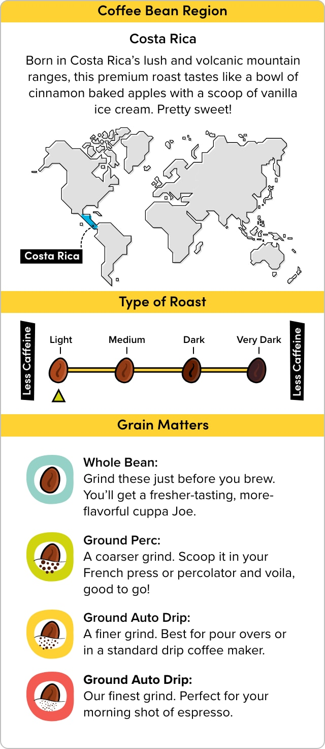 Coffee Infographic