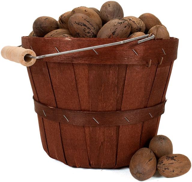 Pecan bucket