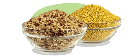 Freeze Dried Vegetables — Snacks — Nuts com