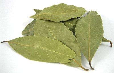 Link to Bay Leaves (Laurel Leaves)