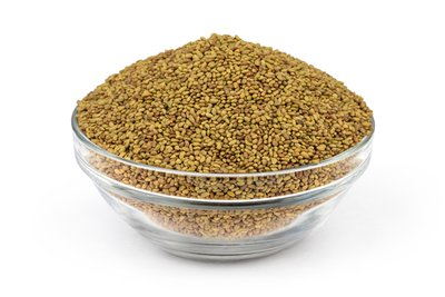 Link to Organic Alfalfa Seed