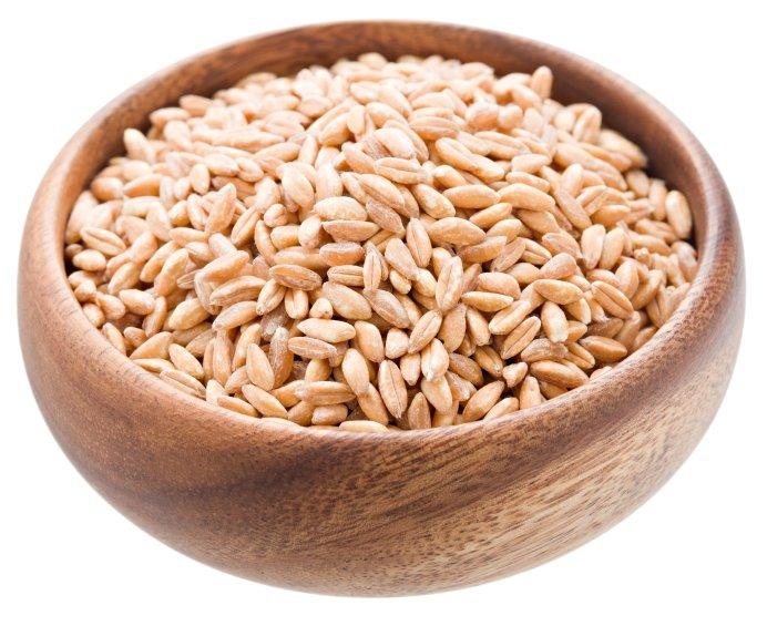 Organic Pearled Farro — Grains