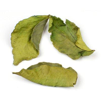 Link to Kaffir Lime Leaves